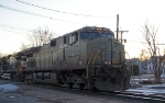 NS 9894 in primer